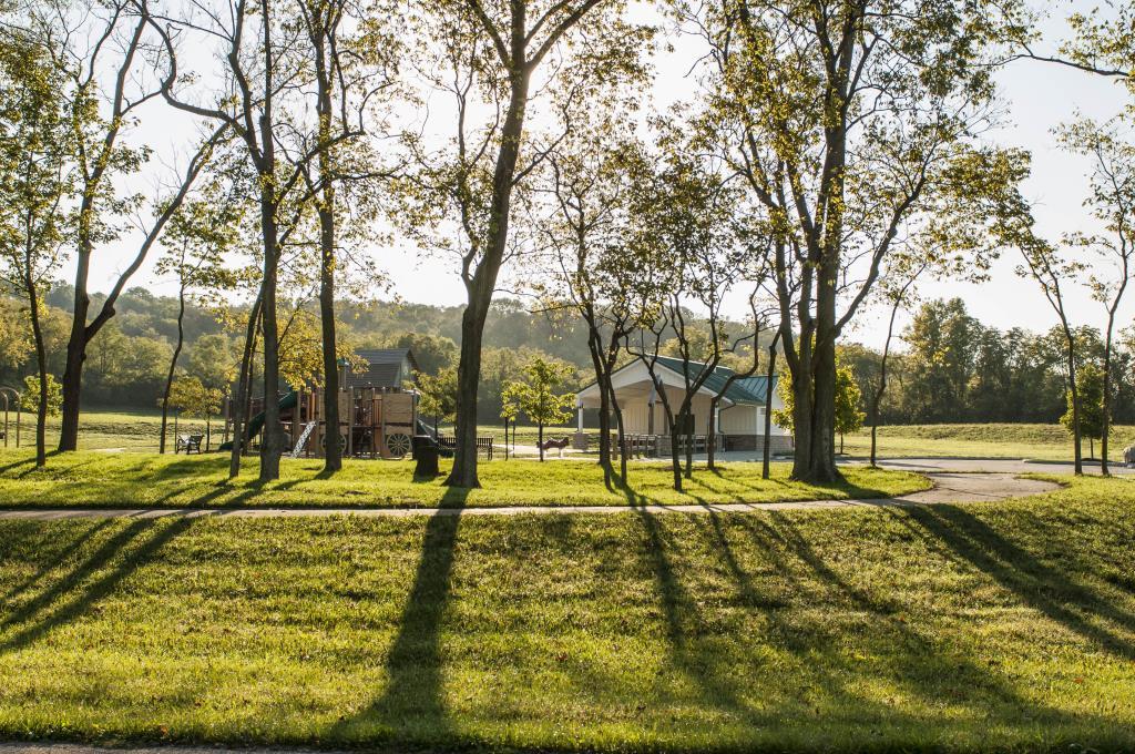 Beckett Park trees
