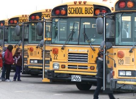 busses 2 web